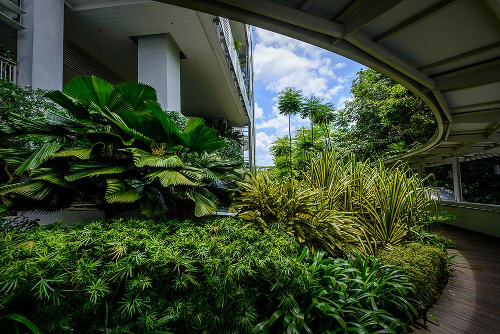 photographing landscape within a building | corporate photography by tuckys
