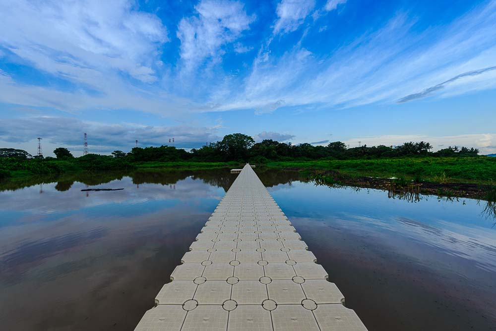 creative architecture photo at singapore nature reserve, kranji marshland, by tuckys