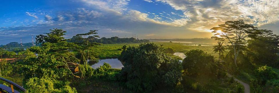 panorama sunrise nature landscape photography of kranji marshland, tuckys
