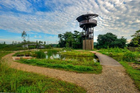 landscape architecture photography at Singapore kranji marshes, by tuckys photography