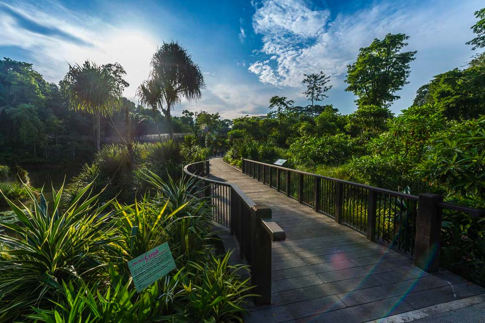 landscape architecture photographer for nature park in singapore, by tuckys