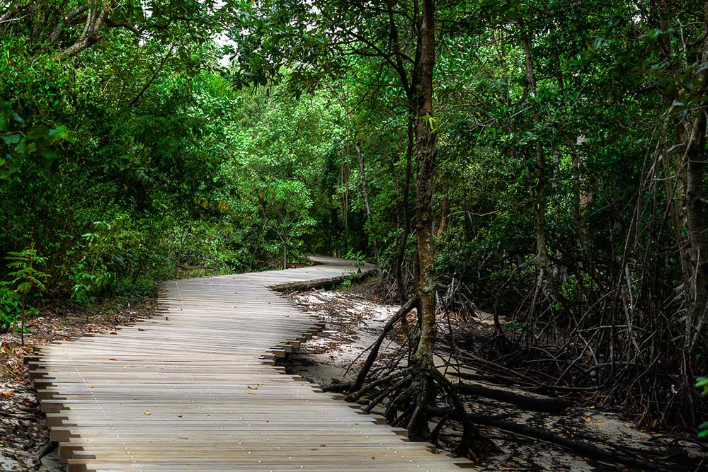 landscape architecture photography with nature parks, by tuckys