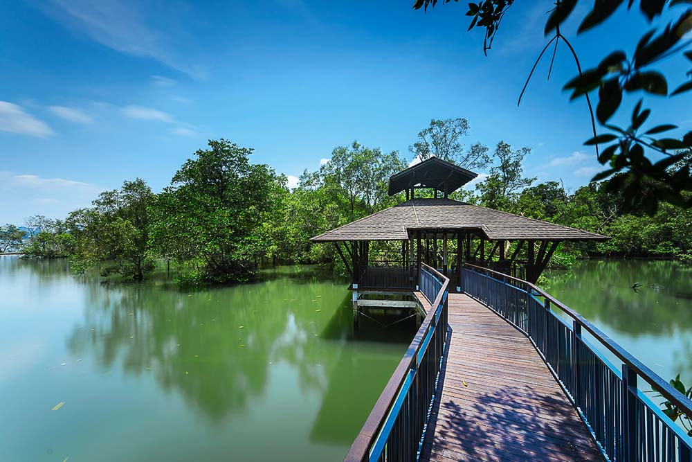 corporate photographer for singapore nature parks, by tuckys
