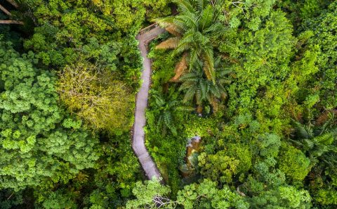 nature landscape drone photographer by Tuckys